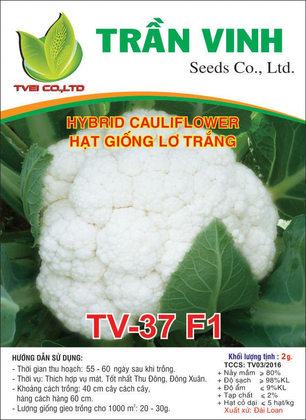 Hạt giống Lơ trắng TV-37 F1